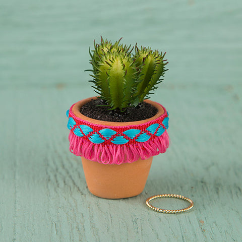 Natural Life - Hot Pink Fringe Mini Succulent