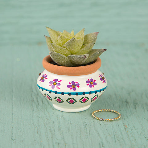 Natural Life - Cream & Navy Mini Succulent
