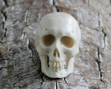 1 PC Deer Antler, Organic Carving, Skull, Skeleton - Jewelry Ornament and Collectible - Gift Idea - Gift Idea for Rockers, Bikers
