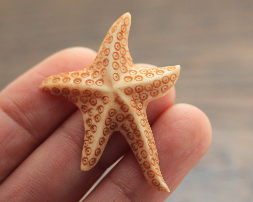 Carved Bone, Starfish sea Specimen, Ambient Jewelry, Fantasy Animal Jewellry, High Quality Wholesale Marine Carvings Pendant Bead (B259)