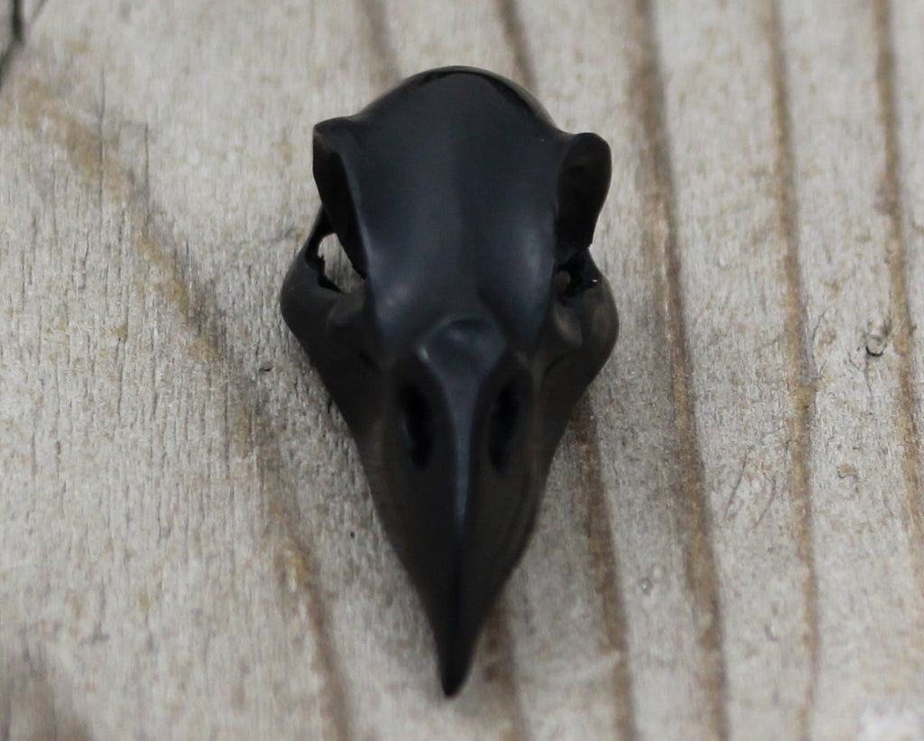 Raven Skull, Bull Horn Carving, Black Bird Skull, Vulture Skull, Hand Carved Bull Horn, Gothic Jewelry, 43mm, Skull Collector B132