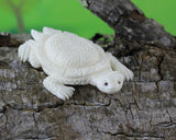 Turtle, Tortoise Symbol of Wisdom Carved Bone, Miniature Reptile Charm, Realistic Animal Carving, Collectible Gift for Kids, Adults B124