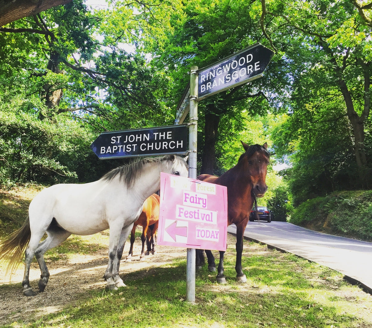 A Special Post from The New Forest Fairy Festival