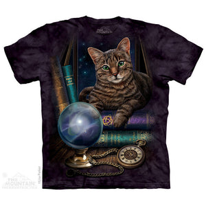 The Fortune Teller T-Shirt -- DragonSpace