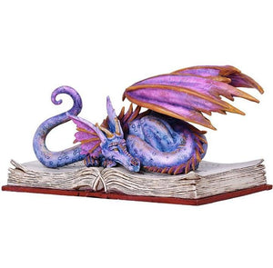 Book Wyrmll Dragon -- DragonSpace