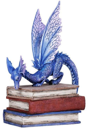 Book Dragon -- DragonSpace