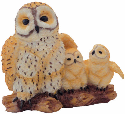 Spotted Owl Family -- DragonSpace