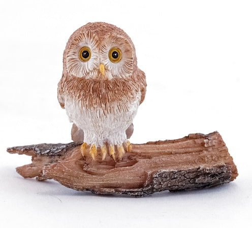 Cute Owl on Log