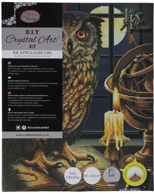 The Astrologer Owl Crystal Art Kit