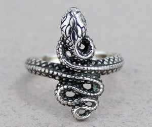 Snake Ring -- DragonSpace