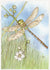 Brambly Dragonfly Card