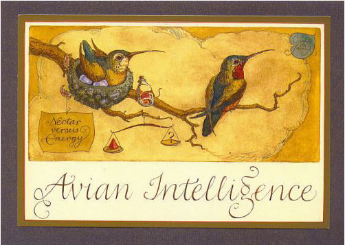 Avian Intelligence Card -- DragonSpace