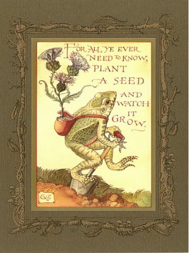 Frog Planting Card -- DragonSpace