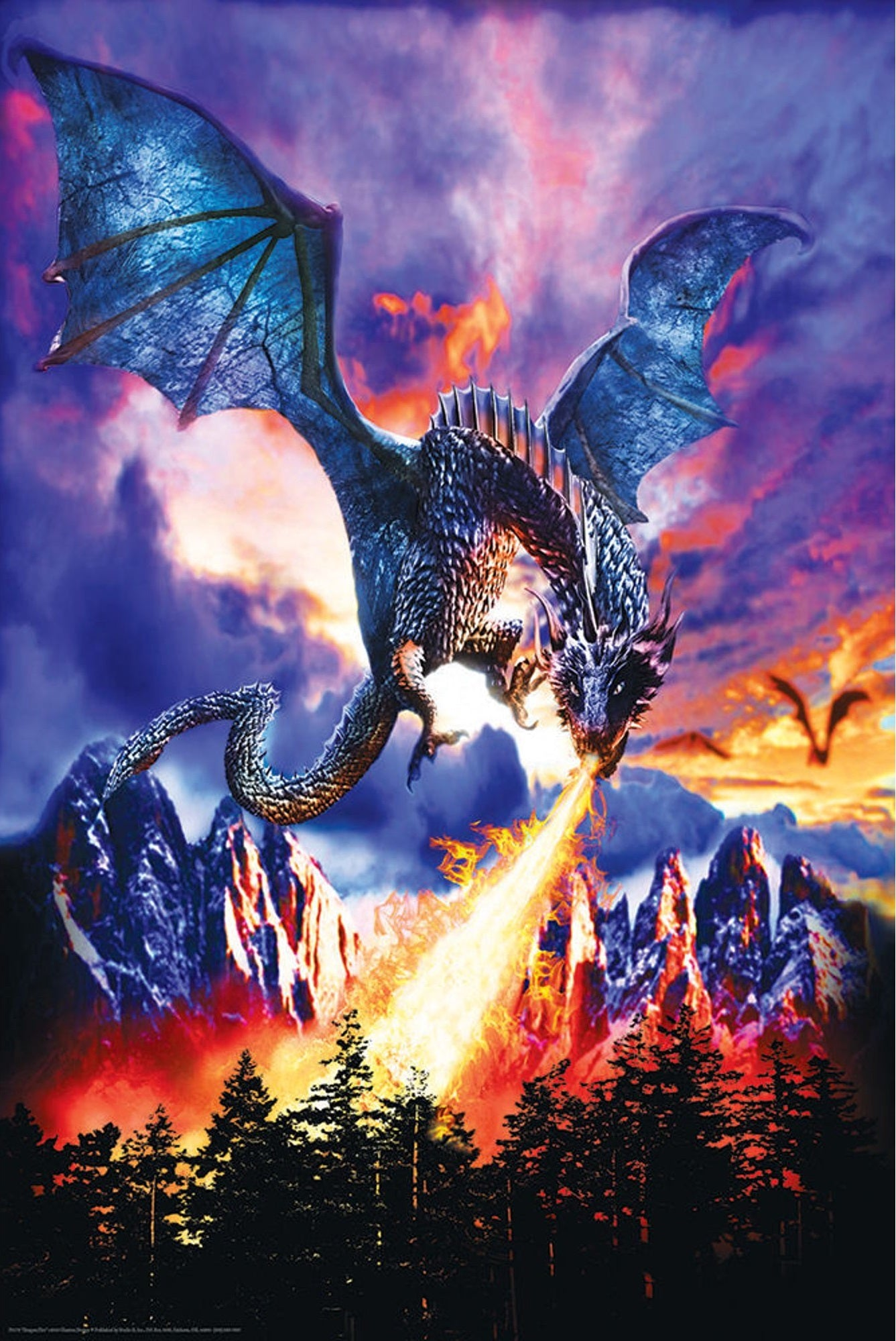 Dragon Fire Poster