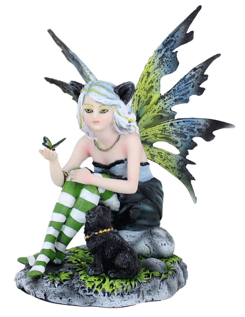 Black Cat Fairy