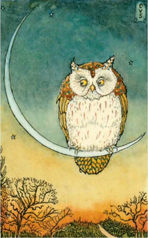 Owl on Moonbow Notecard