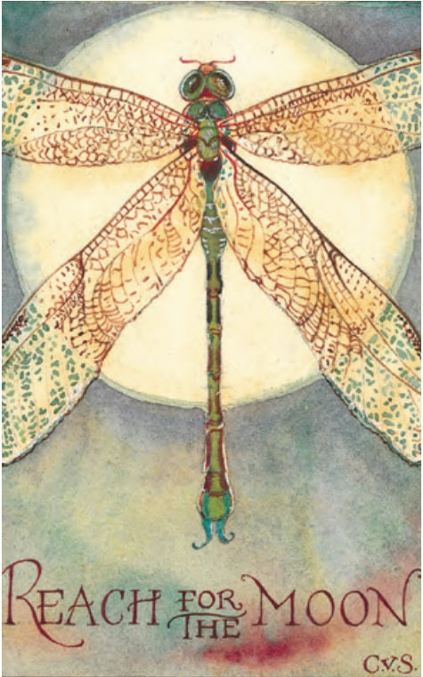"Dragonfly ""Reach for the Moon"" Notecard"