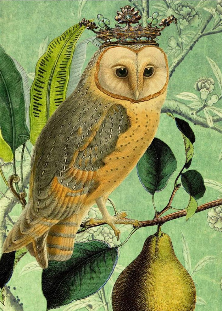 The Owl & The Pear Card
