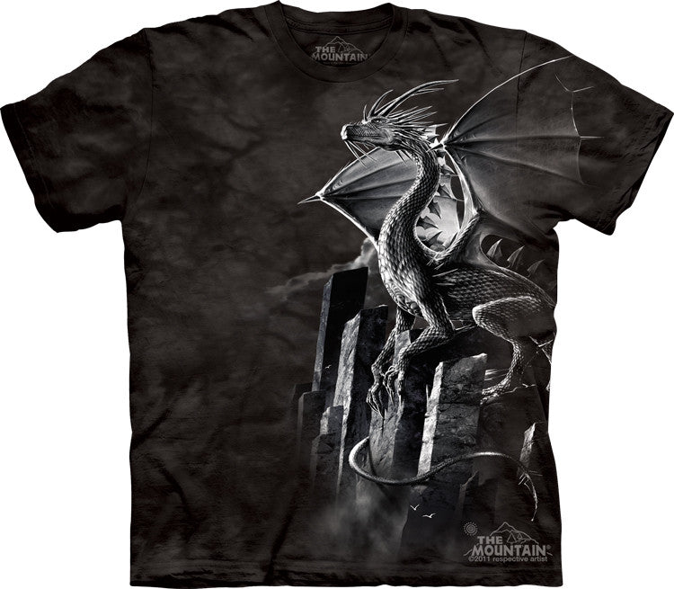 Silver Dragon T-Shirt -- DragonSpace