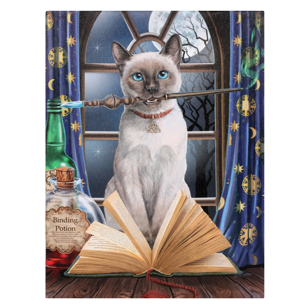 Hocus Pocus Cat Canvas Print