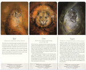Animal Spirits Knowledge Cards -- DragonSpace
