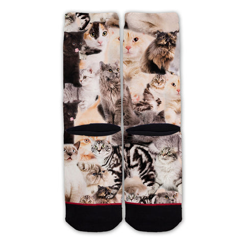Function - Cat Collage Fashion Sock