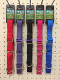 "~GUARDIAN GEAR / NYLON / MARTINGALE / DOG COLLARS / 2 COLOURS 18""-26""~"