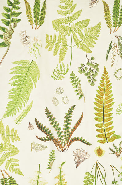 Silk Scarf - Fern design