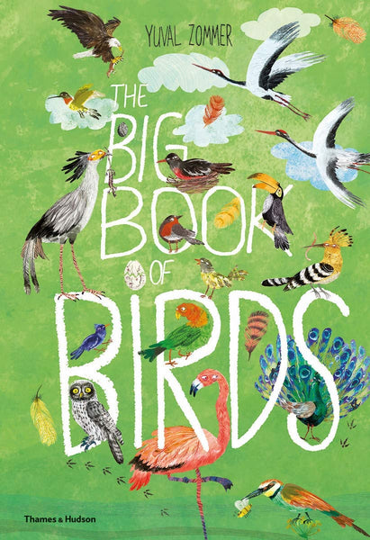 Big Book of Birds by Yuval Zommer