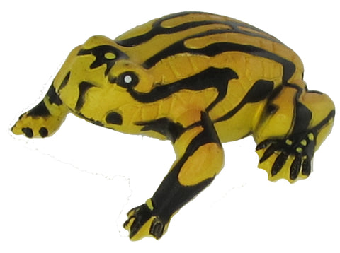 Science and Nature Corroboree Frog
