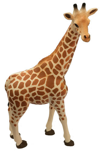 Science and Nature Giraffe