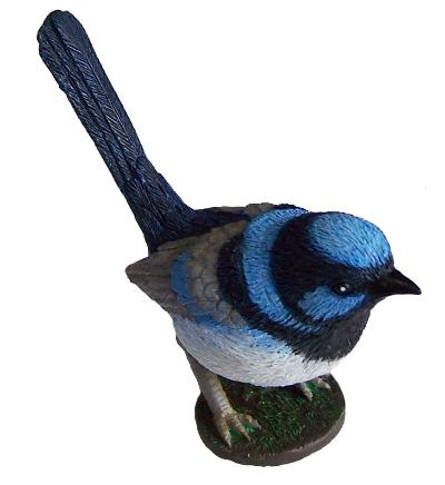 Science and Nature Blue Wren