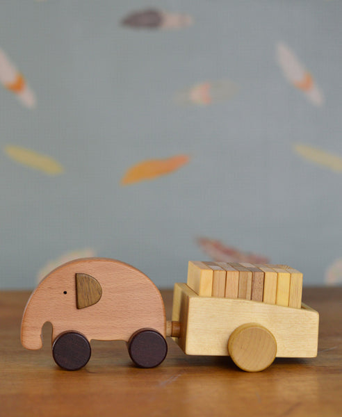 Soopsori Elephant and Cart Set
