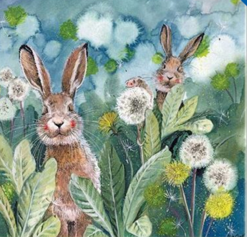 Alex Clark Little Rabbits Card