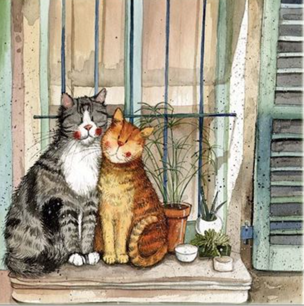 Alex Clark Provence Cats Card
