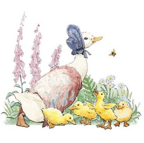 Hypa Beatrix Potter Mother Duck Baby Card