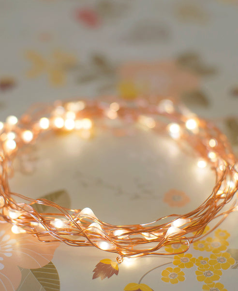 Delight Deoor String Lights - Copper Plug (10m)