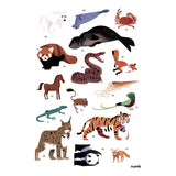 Poppik Discovery Stickers-Animals of the World