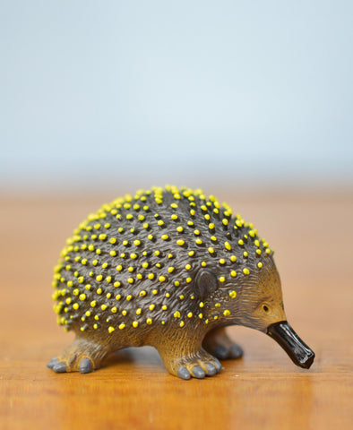 Science and Nature Echidna