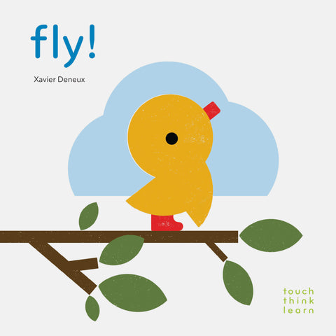Touch, Think, Learn: Fly Board Book