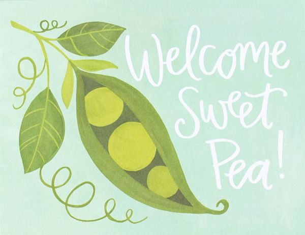 1canoe2 Welcome Sweet Pea Baby Card
