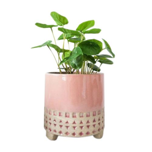 Urban Kyra Planter with Legs: Pink Medium