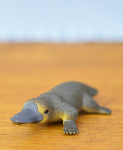 Science and Nature Platypus