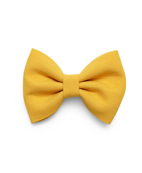 Pretty Wild Georgie Single Bow Plain New Gold