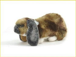 Hansa German Lop Ear Rabbit 25cm
