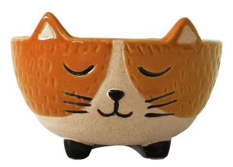 Urban Cat Bowl: Orange and Sand 12cm