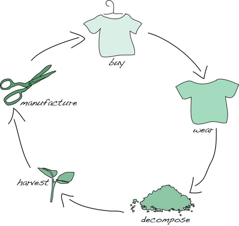 clothing fashion lifecycle cradle to cradle biodegradable
