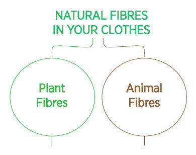 Natural fibres clothing animal plant