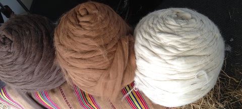 alpaca fibre tops sustainability peru moda