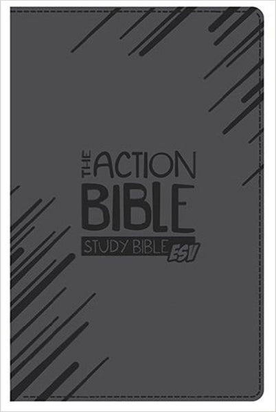 The Action Bible ESV Study Bible Boys Edition Slate Grey